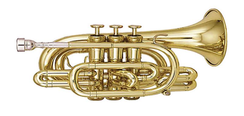 Bb-pocket-trumpet
